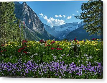 Wildflowers In Banff National Park Canvas Print
