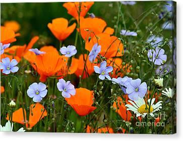 Canvas Print featuring the photograph Gabriella's Flowers by Lisa L Silva