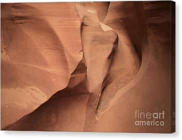 Wildhorse Curves And Lines Canvas Print by Adam Jewell