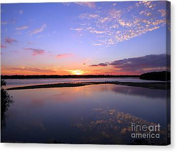 Wildlife Drive Sunset Canvas Print