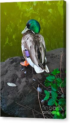 Wildlife In Central Park Canvas Print