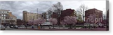Wilkes-barre In Bloom Canvas Print by Christina Verdgeline