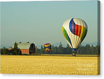Canvas Print featuring the photograph Willamette Valley Ballooning by Nick  Boren