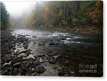 Williams River Autumn Mist Canvas Print by Thomas R Fletcher