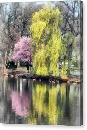 Willow And Cherry By Lake Canvas Print by Susan Savad