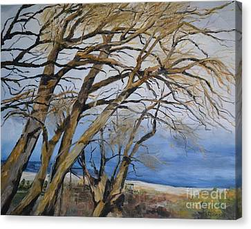 Wind Blown Tree Canvas Print - Willow Dance by Lori Pittenger