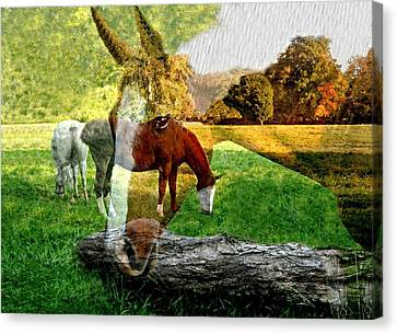 Willow Canvas Print by Diana Angstadt
