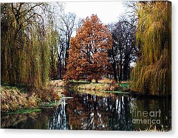 Canvas Print featuring the photograph Willow Lake by Cassandra Buckley