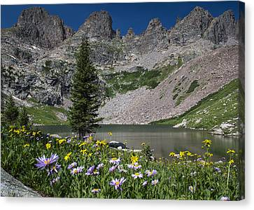 Willow Lake Canvas Print