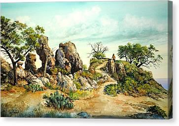 Willow Loop Overlook Canvas Print
