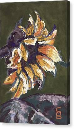 Wilting Sunflower Canvas Print by Cristel Mol-Dellepoort