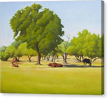 Wimberley Pastoral Canvas Print by Gary  Hernandez