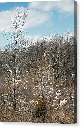 Wind-blown Rubbish Canvas Print by Jim West