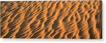 Wind Blown Sand Tx Usa Canvas Print by Panoramic Images