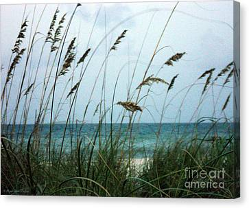Canvas Print featuring the photograph Wind Dancers by Megan Dirsa-DuBois