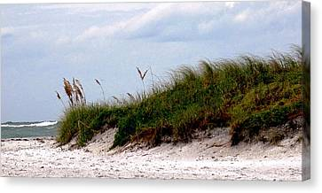 Wind In The Seagrass Canvas Print by Ian  MacDonald