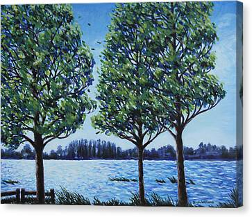 Wind In The Trees Canvas Print by Penny Birch-Williams