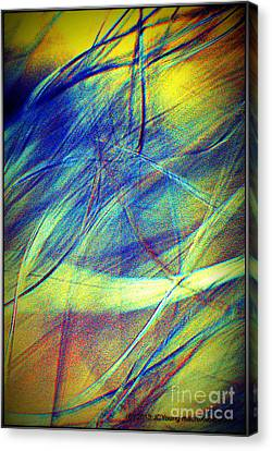 Wind Canvas Print by JCYoung MacroXscape