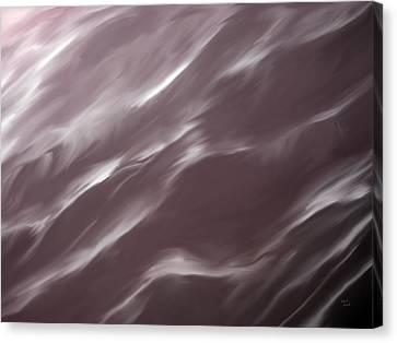 Wind Canvas Print by Leland D Howard