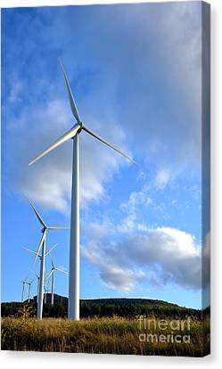 Wind Turbines Canvas Print - Wind Turbine Farm by Olivier Le Queinec