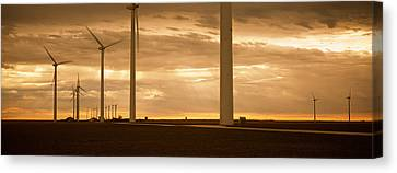 Wind Turbines In A Field, Amarillo Canvas Print by Panoramic Images