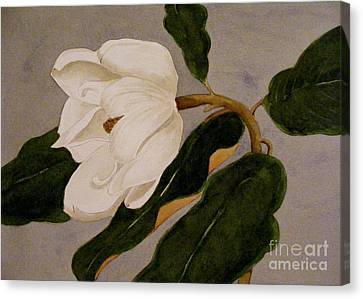 Canvas Print featuring the painting Windblown Magnolia by Nancy Kane Chapman