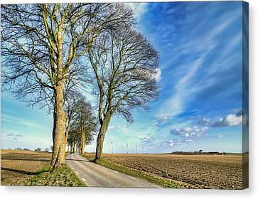 Winding Country Road Canvas Print by EXparte SE
