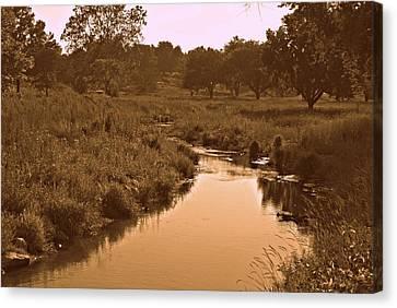 Creek Canvas Print - Winding Creek by Dawdy Imagery