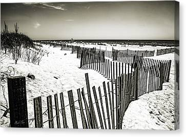 Winding Fence - Bridgehampton Beach - Ny Canvas Print by Madeline Ellis