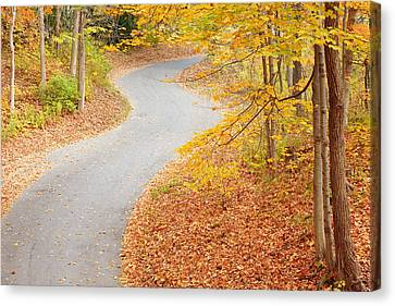 Winding Into Fall Canvas Print