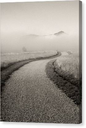 Winding Path And Mist Canvas Print by Marilyn Hunt