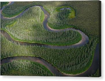 Winding River In The Arctic Canvas Print by Roger Clifford