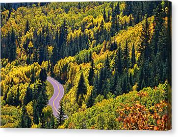 Winding Road Canvas Print by Allen Beatty