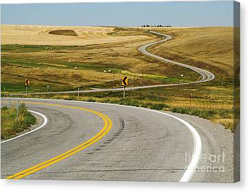 Canvas Print featuring the photograph Winding Road by Sue Smith