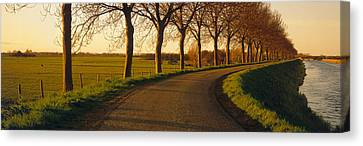 Winding Road, Trees, Oudendijk Canvas Print