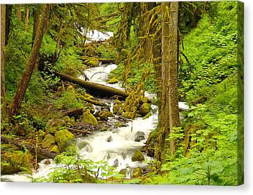 Winding Through The Forest Canvas Print by Jeff Swan