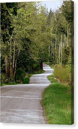 Hornby Island Canvas Print - Winding Your Way Home by Annie  DeMilo