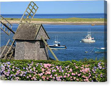 Windmill And Hydrangeas On Chatham Waterfront Cape Cod Canvas Print by John Burk