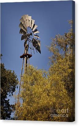 Windmill Canvas Print by David Millenheft