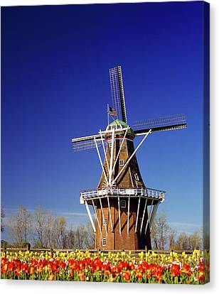 Windmill In A Tulip Field, De Zwaan Canvas Print