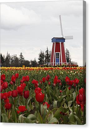 Canvas Print featuring the photograph Windmill Red Tulips by Athena Mckinzie