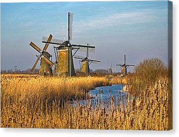 Windmills And Reeds Near Kinderdijk Canvas Print