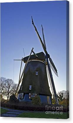 Windmills Of Holland Canvas Print by Pravine Chester