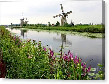 Windmills Of Kinderdijk With Wildflowers Canvas Print