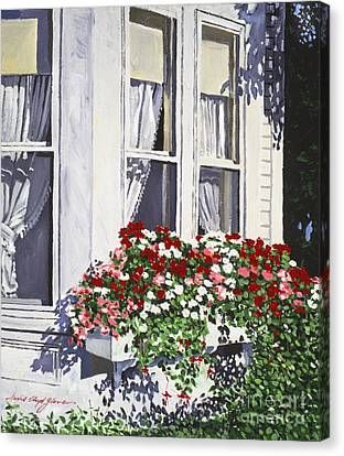 Flower Boxes Canvas Print - Window Box Colors by David Lloyd Glover