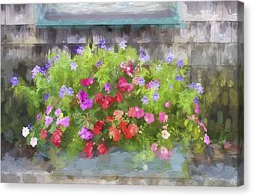 Window Box Painterly Effect Canvas Print by Carol Leigh