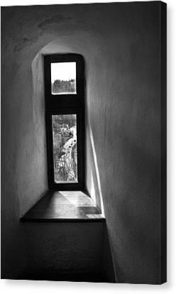Window Dracula's Castle Interior204 Canvas Print by Dorin Stef