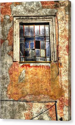 Window Dressing Canvas Print by Craig T Burgwardt