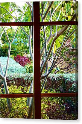 Canvas Print featuring the photograph Window Garden by Amar Sheow