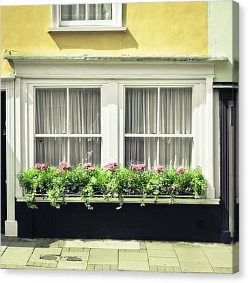 Window Garden Canvas Print by Tom Gowanlock